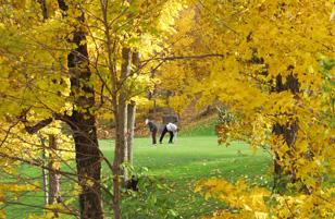 magie du golf au Québec